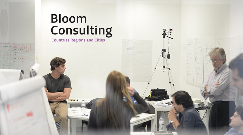 Bloom Consulting company profile
