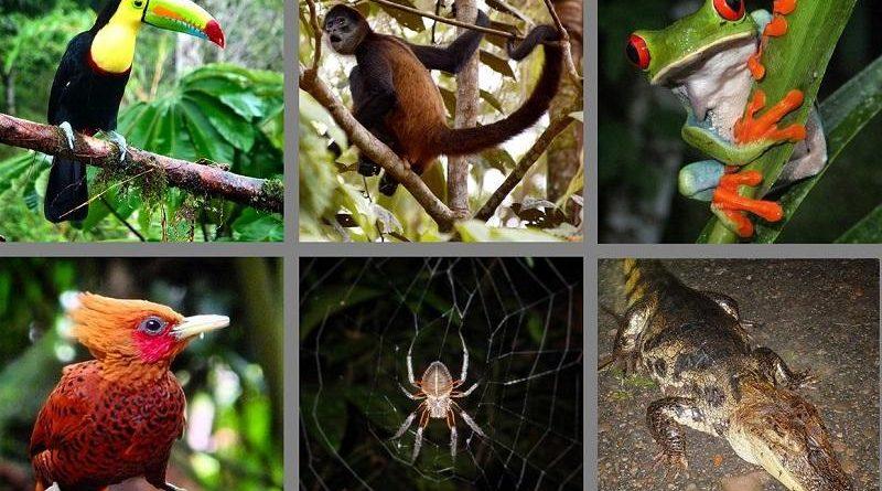 Destination check - sustainable tourism in Costa Rica