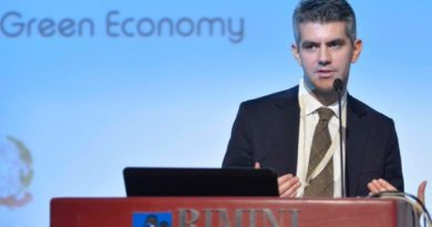 Jeremy Tamanini, Green Economy, Sustainability and Country Reputation